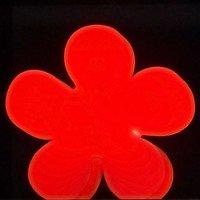 8Seasons Leuchtblume Shining Flower 60cm rot außen