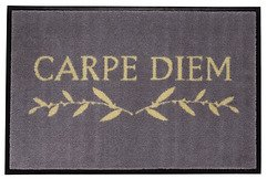 Gift Company Fußmatte Carpe Diem waschbar 75 x 50cm grau