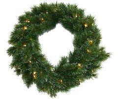 Edelman Weihnachtskranz 25 LED 45cm grün innen