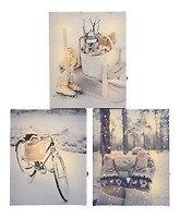 Kaemingk LED Bilder Winter Motive 3er Set 5/6/6 LED 20 x 25cm batteriebetrieben mit Timer