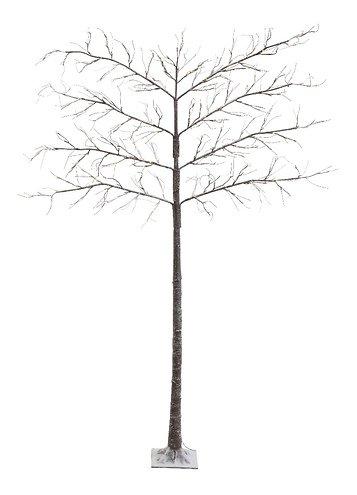 Kaemingk Leuchtbaum Spalierbaum Schnee 272 LED außen 240cm braun