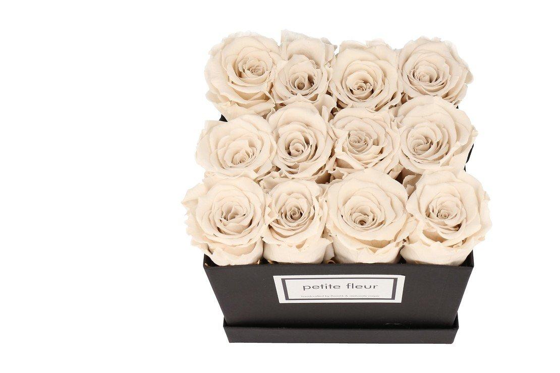 Petite Fleur Flowerbox Infinity Rosen M quadratisch in Ivory mit 10-12 Rosen - Pic 2