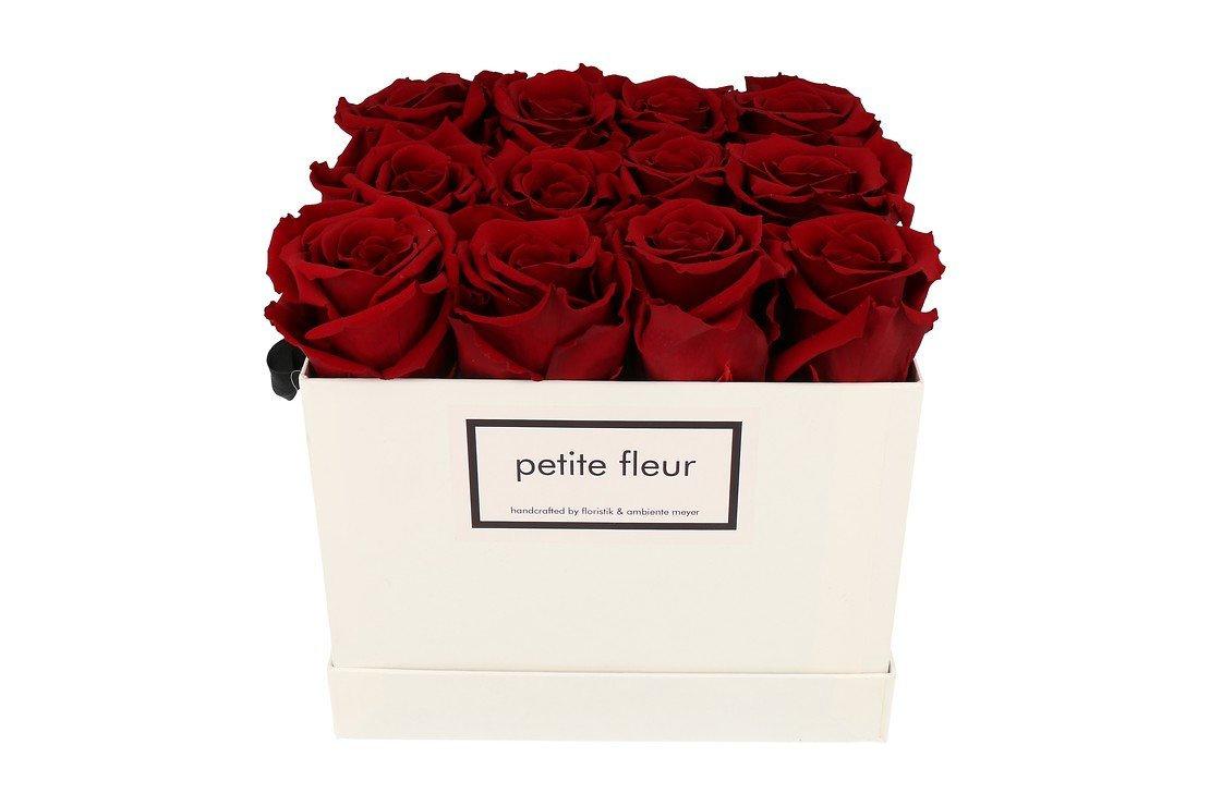 Petite Fleur Flowerbox Infinity Rosen M quadratisch in Dunkelrot mit 10-12 Rosen - Pic 1