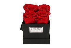Petite Fleur Flowerbox Infinity Rosen S quadratisch in Rot mit 4-5 Rosen