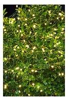 Sirius Lichterkette Knirke 160 LED Metallstrang außen 16 m grün