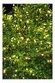 Sirius Lichterkette Knirke 160 LED Metallstrang außen 16 m grün - Thumbnail 1