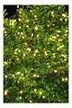 Sirius Lichterkette Knirke 80 LED Metallstrang außen 8 m grün - Thumbnail 1