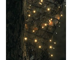 Sirius Lichterkette David 40 LED warmweiß außen 6m grün