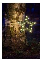 Sirius Leuchtstern Garden Star big 40 LED außen Batterie 32cm grün