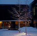 Sirius Lichterdekoration Easy-Line Netz 208 LED warmweiß 2,1 x 1,5m außen schwarz - Thumbnail 4