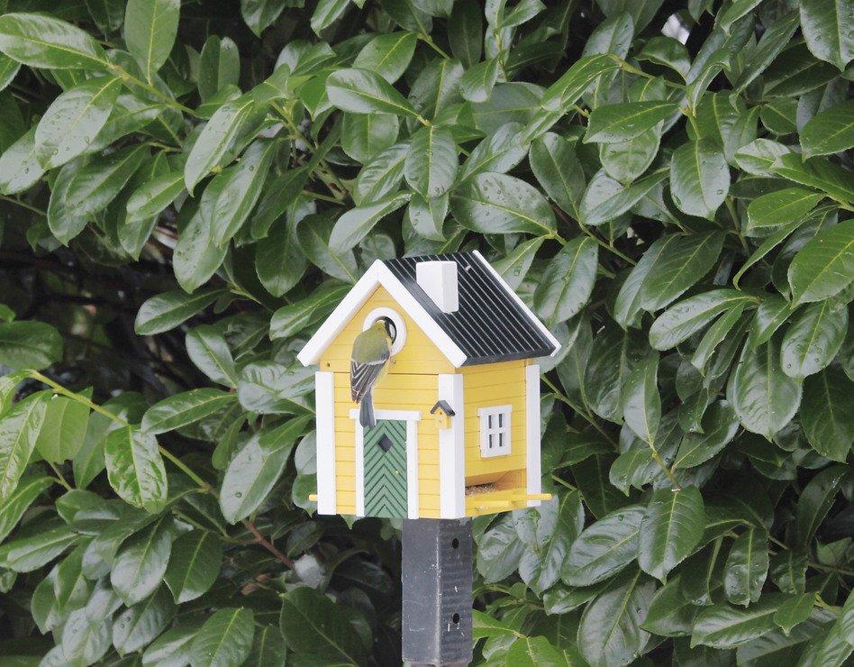 Wildlife Garden Vogelhaus Multiholk Villa plus - Pic 3