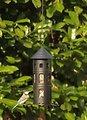 Wildlife Garden Vogelhaus Kombi-Futterstelle schwarz - Thumbnail 4