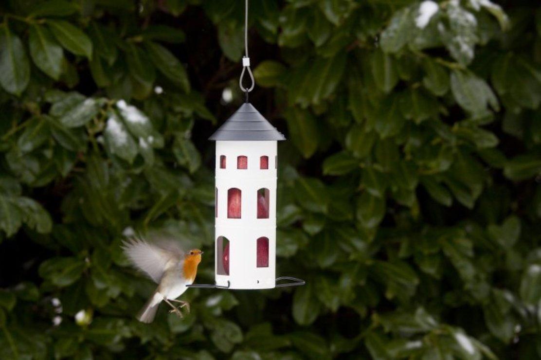 Wildlife Garden Vogelhaus Kombi-Futterstelle weiß - Pic 4