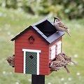 Wildlife Garden Vogelfutterspender mit Bad Rotes Haus - Thumbnail 2